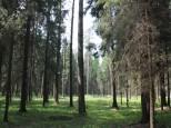 Коттеджный посёлок Чистые пруды 3 45