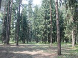Коттеджный посёлок Чистые пруды 3 50