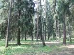 Коттеджный посёлок Чистые пруды 3 54