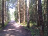 Коттеджный посёлок Морозов 1