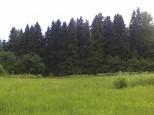 Коттеджный посёлок Морозов 3