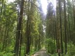 Коттеджный посёлок Морозов 12