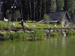 Коттеджный посёлок Трувиль 8