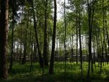 Коттеджный посёлок Резиденция Рублево 33
