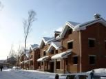 Коттеджный посёлок Витязь 15