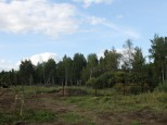 Коттеджный посёлок Пестово лайф 4