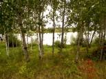 Коттеджный посёлок Южные озера 2 1