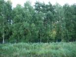 Коттеджный посёлок Стольный 6