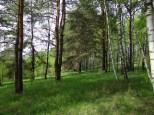 Коттеджный посёлок Между лесом и рекой 3