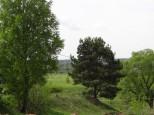 Коттеджный посёлок Между лесом и рекой 4