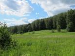 Коттеджный посёлок Между лесом и рекой 8
