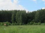 Коттеджный посёлок Между лесом и рекой 15