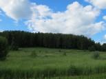 Коттеджный посёлок Между лесом и рекой 16
