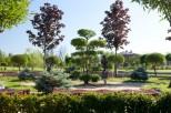 Коттеджный посёлок Миллениум Парк 5
